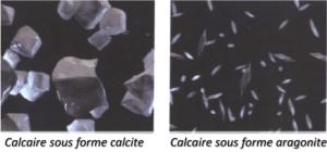 Le système de filtration d'eau AMILO transforme la calcite en aragonite