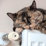 Economies de désembouage de votre circuit de chauffage